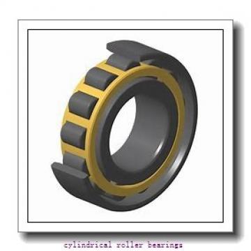 45 mm x 100 mm x 36 mm  FAG NU2309-E-TVP2  Cylindrical Roller Bearings