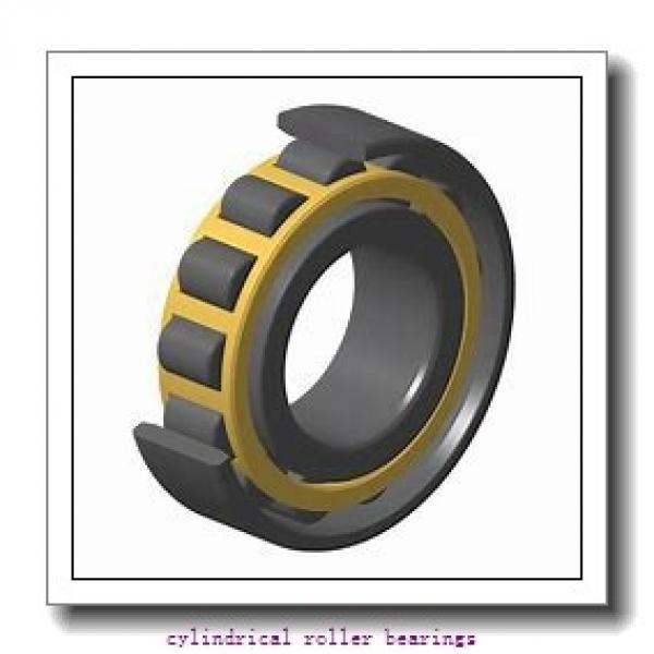 FAG NU219-E-M1-C3  Cylindrical Roller Bearings #3 image