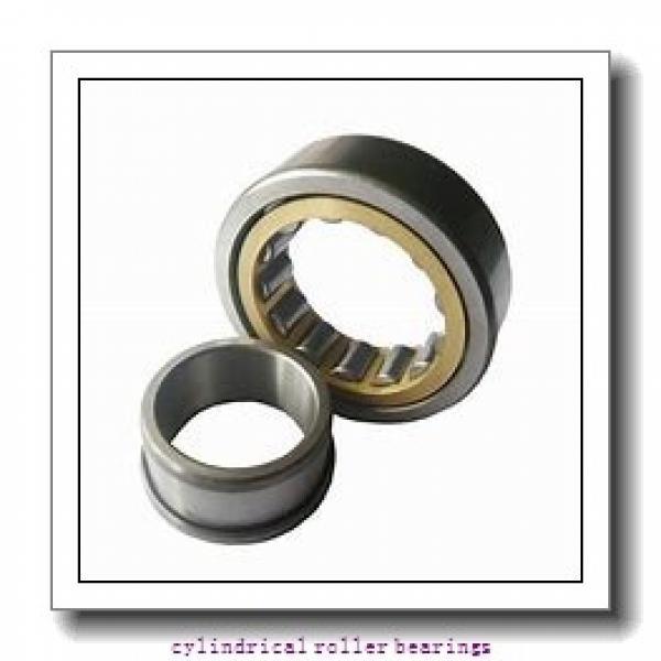 FAG NU219-E-M1-C3  Cylindrical Roller Bearings #2 image