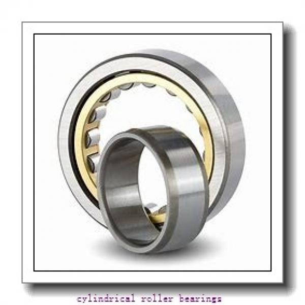 4.724 Inch | 120 Millimeter x 8.465 Inch | 215 Millimeter x 1.575 Inch | 40 Millimeter  ROLLWAY BEARING MUC-224-014  Cylindrical Roller Bearings #1 image