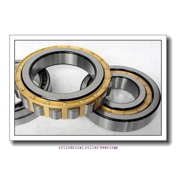 35 mm x 80 mm x 21 mm  FAG NU307-E-TVP2  Cylindrical Roller Bearings #1 image