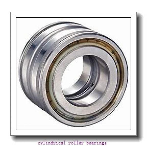 FAG NU316-E-M1-C4  Cylindrical Roller Bearings #1 image